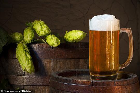 Photo of Xác định chất tiêu diệt ung thư gan, ruột trong… bia