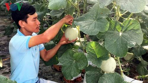 Photo of Ý chí khởi nghiệp của thanh niên An Giang đang lan tỏa mạnh mẽ